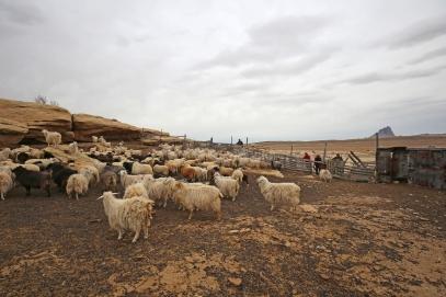 The Garnanez winder sheep camp is northwest of the Shiprock rock formation.