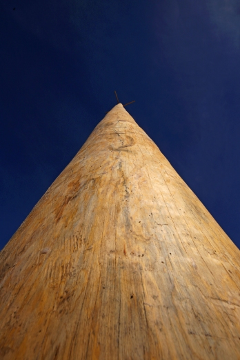 During Taos' feast day, people climb this tall pole.