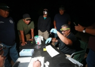 Dr. Ernie Valdez shows a small bat to workshop attendees.